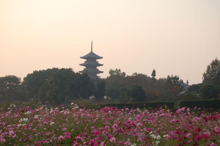 備中国分寺の五重塔の写真