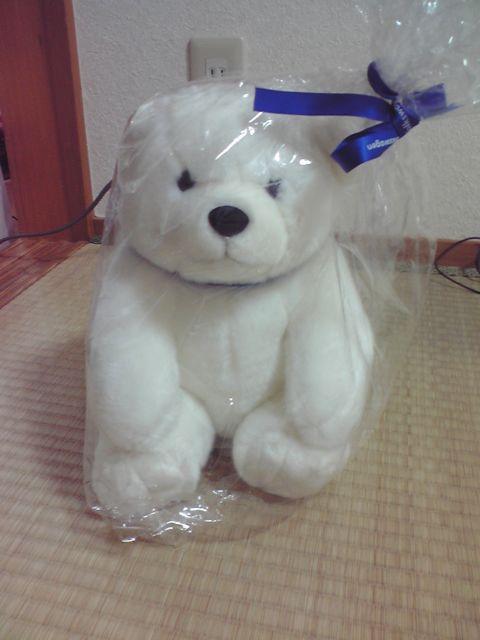 フォルクスワーゲンポロの白クマのぬいぐるみの写真