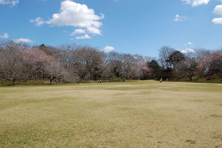 佐倉城址公園本丸跡の写真