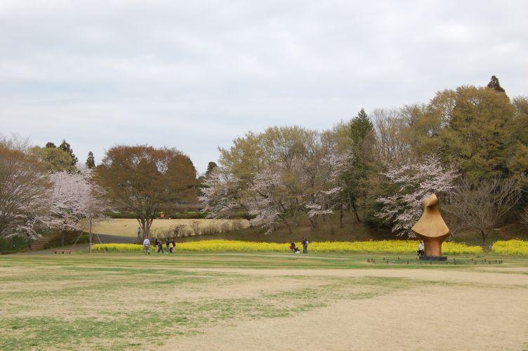 川村記念美術館の広場の写真