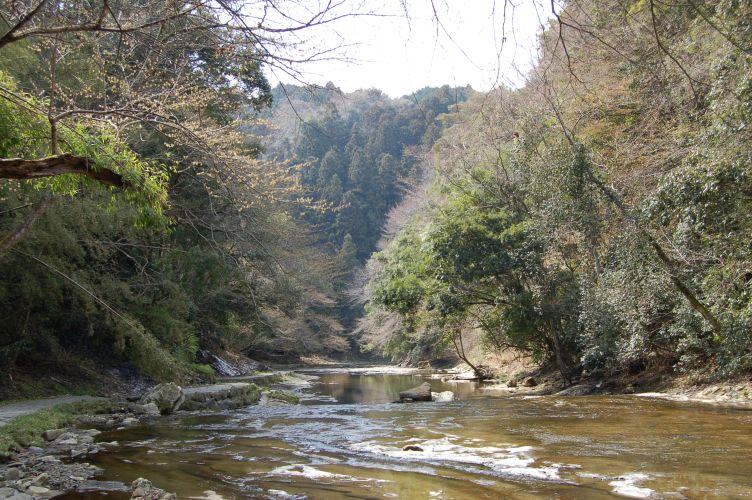 養老渓谷の写真